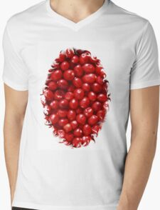 Cranberry Ville Mens V-Neck T-Shirt