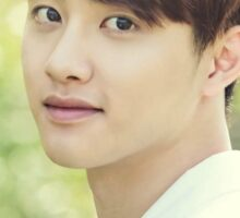 EXO - D.O - ( Nature Republic ) Sticker