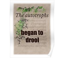 Big Bang Theory - The autotrophs began to drool, Poster