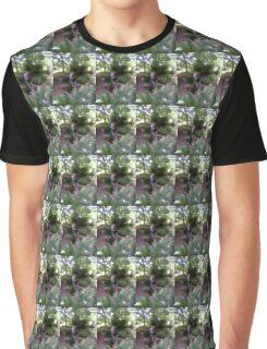 Tis but a Dream Graphic T-Shirt