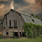 Weathered Barn by Maria Dryfhout