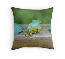 egg Throw Pillow