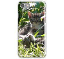 Kittens in morning sun iPhone Case/Skin