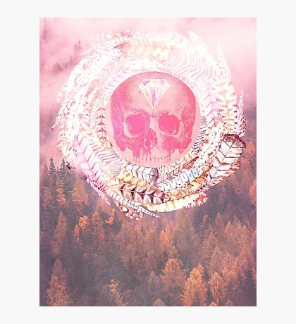 Skull Forest Photographic Print