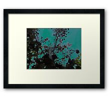 Nature Prints Framed Print