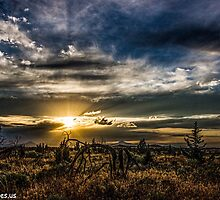 Sunset 31 by Richard Bozarth