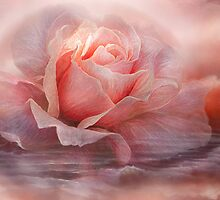 Time To Say Goodbye Rose by Carol  Cavalaris