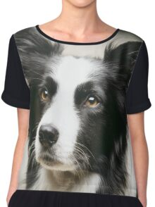 Working Border Collie Chiffon Top