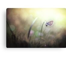 I can see you in my dreams... Canvas Print