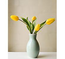 Yellow tulips in green vase Photographic Print