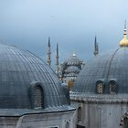 Blue Mosque in Istanbul by Adam Asar