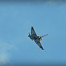 Eurofighter Typhoon by Mick Smith