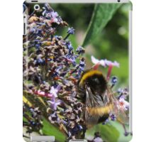 Last of the Lavender Bumble Bee iPad Case/Skin