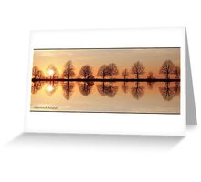 Tree Reflections. Greeting Card