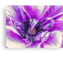 Purple Treasure Canvas Print