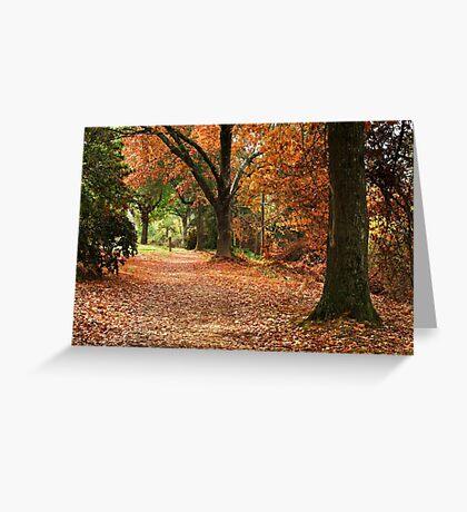 Cherry Walk - Bright Greeting Card