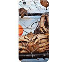 Crab iPhone Case/Skin
