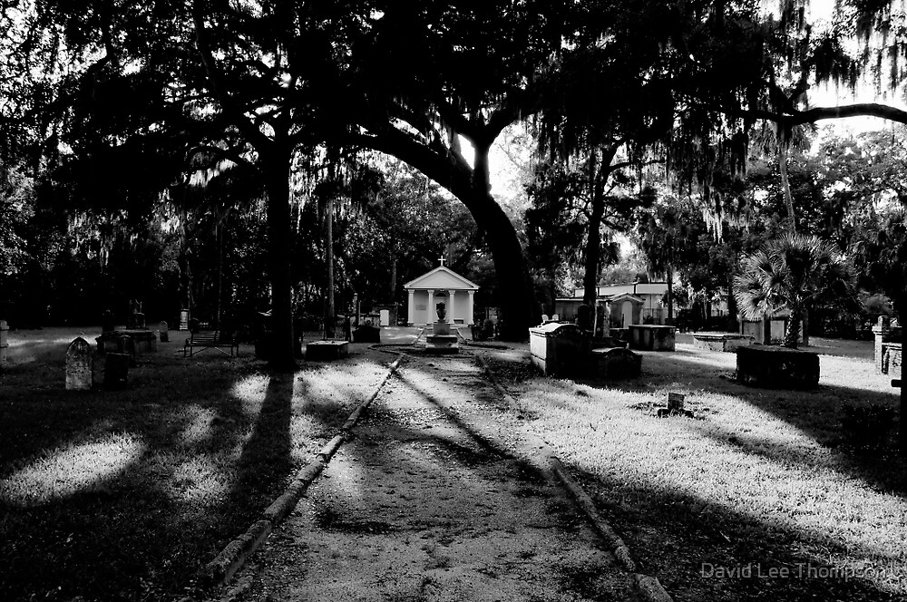 Tolomato Cemetery Saint Agustine by David Lee Thompson