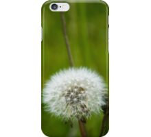 Dandelion White iPhone Case/Skin