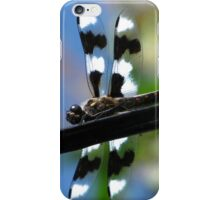 Dragonfly Medicine iPhone Case/Skin
