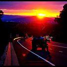 Welcome Back to Canberra by Rinaldo Di Battista