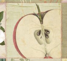 Apple Blossoms II Sticker