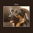 Matty by Lydia Marano