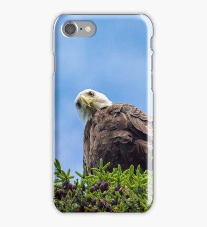 Birds Eye iPhone Case/Skin