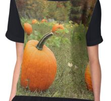 Pumpkin Picking Chiffon Top