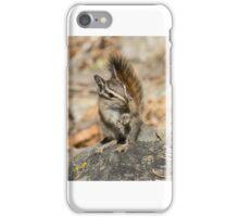 Hello chipmunk! iPhone Case/Skin