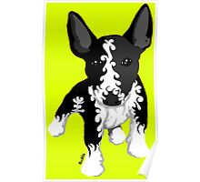 Spiral English Bull Terrier Puppy Poster