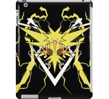 Legendary Bird of Storms iPad Case/Skin