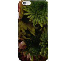 Pretty Posies iPhone Case/Skin