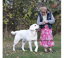 English Labradors from Loyal Labradors Photographic Print