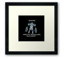 Where are My Testicles, Summer? Framed Print
