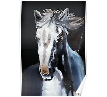 Horse Ghost Poster