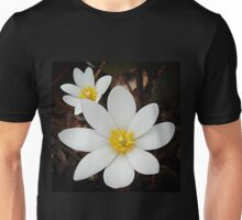 Bloodroot flowers shining in the spring Unisex T-Shirt