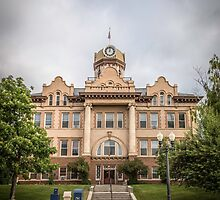 Fergus County Courthouse by Thomas Young