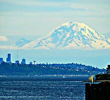 Seattle and Rainier by kchase