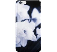 From the Flower Gardens iPhone Case/Skin