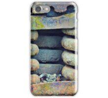 Train Spring iPhone Case/Skin