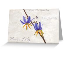 Paroo Lily Greeting Card