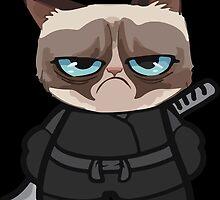 Grumpy Ninja Cat by MPeterson33