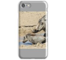 Warthog - African Wildlife Background - Animal Babies iPhone Case/Skin