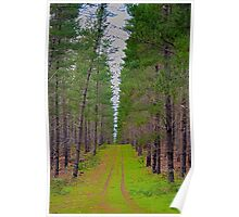 Trail Poster