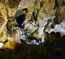 Carlsbad Caverns Study 14  by Robert Meyers-Lussier