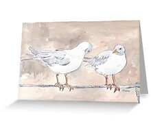 Seagulls at Durban Harbour, South Africa Greeting Card