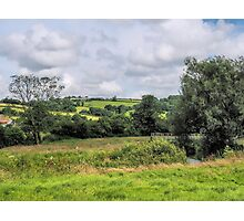 Rural Axminster Photographic Print