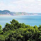 Coastal Path Overlook - Lyme Regis by Susie Peek