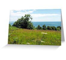 Coastal Path Overlook 2 - Lyme Regis Greeting Card